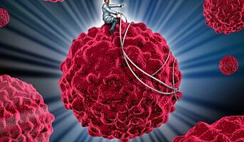 Biltema gir 80 millioner til kreftforskning