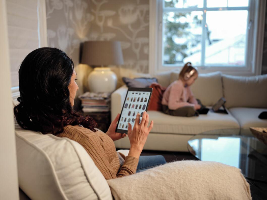 En undersøkelse utført av Kantar TNS på vegne av Telenor, viser at hele 8 av 10 er bekymret for svindel når de handler på nett.
