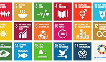 Bærekraftmålene bransjens ledetråd