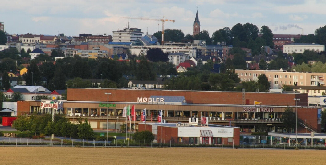 I tillegg til Skeidar er bl.a. Europris, Skousen og Plantasjen leietakere i Skeidar-byggetpå Tunejordet. (Foto: Flickr)