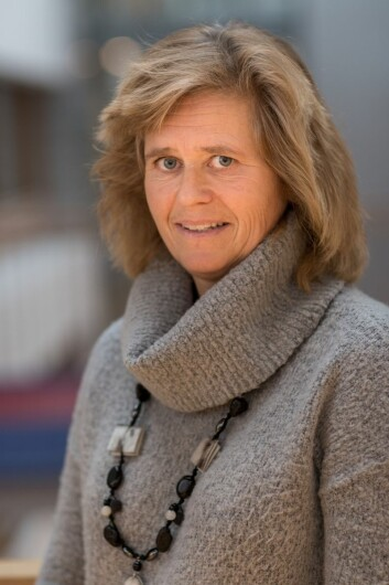 Med større fleksibilitet i leveringstidspunkter og tidsvinduer kunne kostnader vært spart, mener Eirill Bø som er forsker ved BI i Oslo.
