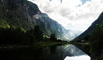 Slik skal Norge lage sunnere og bærekraftig mat