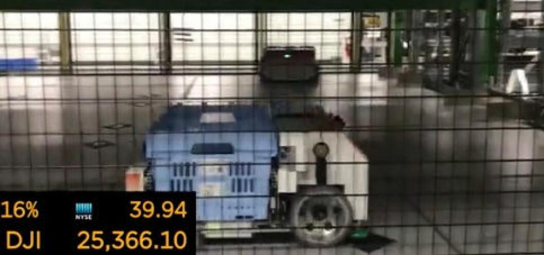 En Alphabot (robot) frakter varer i laboratoriet til Alert Innovation. (Skjermdump fra Yahoo! Finance)