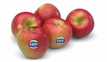Kanzi-eplene er på markedet