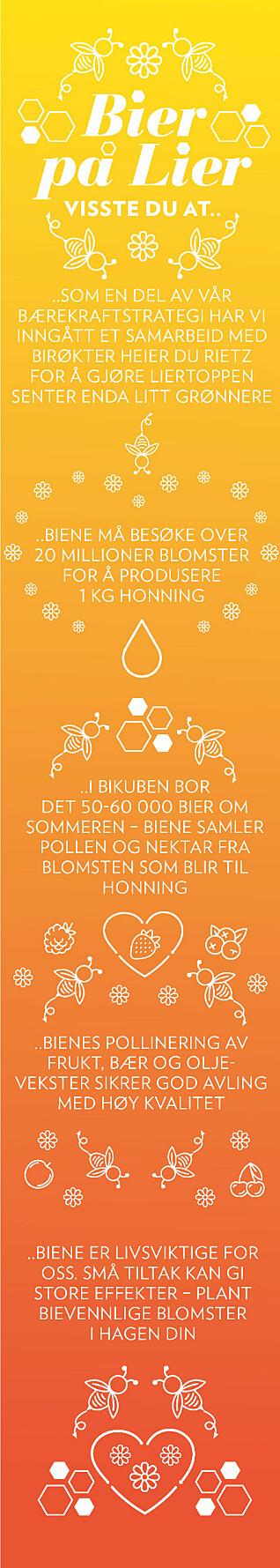 Slik selges budskapet – 'Bier på Lier' – inn via digitale medier.