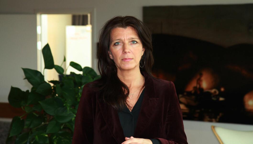 – Det er ikke grensehandelen som er harry, men avgiftene, sier Anne-Cecilie Kaltenborn i NHO Service & Handel.
