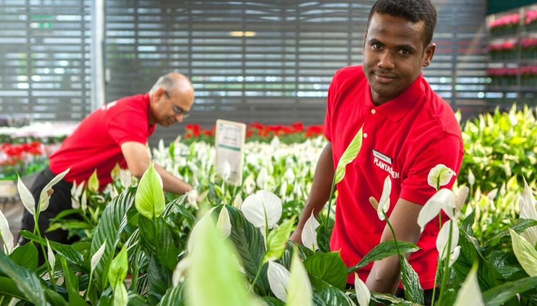 De butikkansatte i Plantasjen får feedback fra kundene direkte til seg selv.