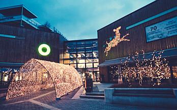 Tidlig planlagt julebelysning gir best resultat