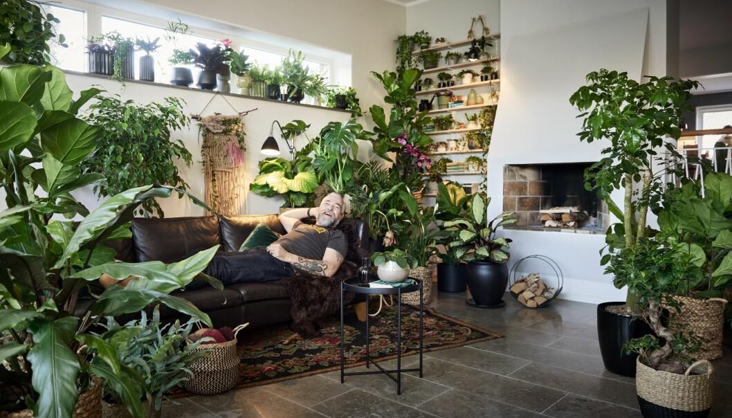 Gjennom sitt nye konsept ønsker Plantasjen å vise all den energien og gleden som finnes for et liv i vekst. I tillegg inspirere kundene sine, vise plantenes rolle i menneskers liv og den lidenskapen mange har for planteverdenen.